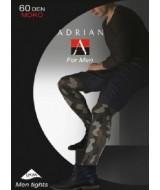 ADRIAN Moro 60